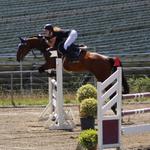 Caretani fliegt unter Joana zum Sieg im Springpferde M* von Leutkirch-Haid