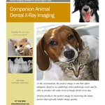 Companion Animal Dental X-Ray Imaging