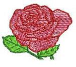 Rose mit Blätter