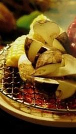 真の日本料理「美菜ガルテンふるかわ」松茸入荷美菜ガルテンふるかわ中津川恵那国産松茸まつたけマツタケ松茸料理ろうじ白舞しろまいしばもちこむそうしめじそなずぼぼうずいくち天然きのこきのこ料理焼き松茸どびん蒸まいたけ舞茸からまついくち網茸あみたけきのこ鍋田瀬下呂付知馬籠妻籠木曽日本料理和食和食処きのこ