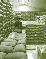 この年より米の生産調整が始まる(S45)