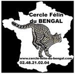 Membre du Cercle Felin du Bengal