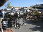 Taxistand auf Büyükada (Prinzeninseln)
