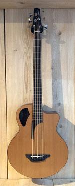 Stanford 5 Saiter-Akustik Bass, 5 String-Acoustic Bass, Musik Fabiani Guitars Calw, Bad Herrenalb, Straubenhardt, Bad Wildbad, Baden Baden, Karlsruhe, Pforzheim