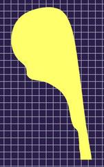 ティルツヘルツェル41/2リム形状