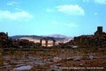 Thubirsicu Numidarum / Khemissa - Arc à trois baies - DZ