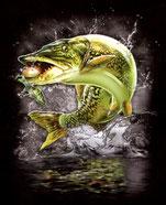 jeune pêcheur de broc