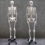 福岡で効果的な肋骨矯正