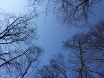 März-Himmel in München   Foto: Heidrun Langer