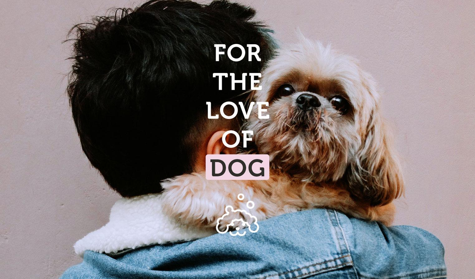 Content Creation Social Media Manager Suesser Hund Design