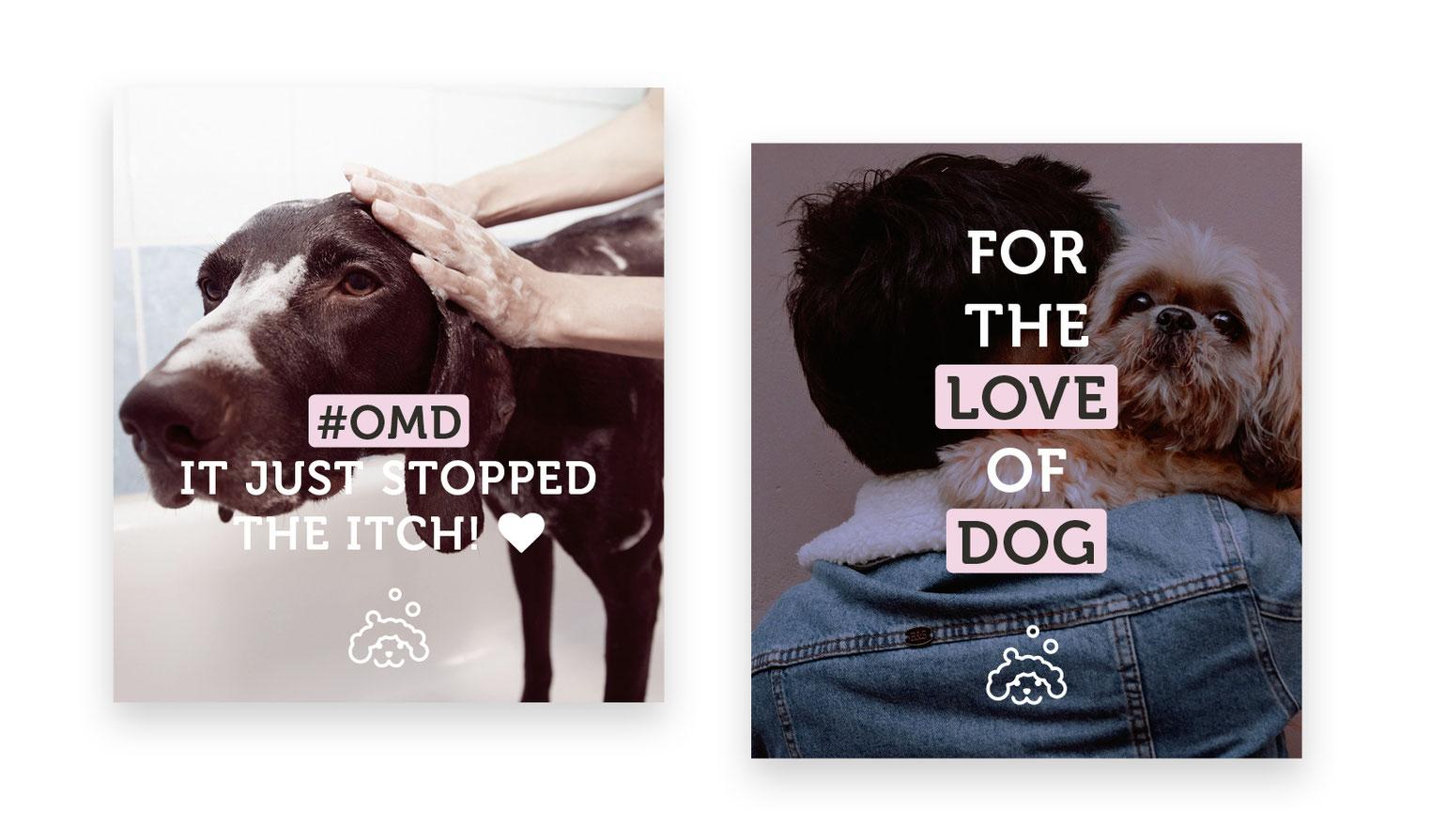 Social Media Content Posting Design Hunde Haustiere
