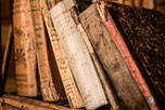 Literatur & Erziehung