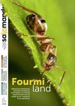 Fourmiland - La Salamandre n°206 - Octobre-novembre  2011