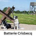 Crisbecq; Urlaub mit Hund in der Normandie