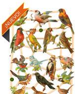 Cromos de aves
