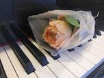 ピアノコース写真
