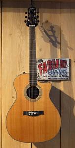 Stanford Radiotone 59 G ECW, Westerngitarre, E- Westernguitar, Cutaway,  Tonabnehmer Pick Up System, Fabiani Guitars, Stuttgart, Leonberg, Weil der Stadt, 75365 Calw