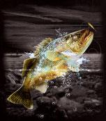 sweat homme pêcheur
