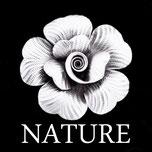 Bagues en argent natures