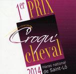 1erPrix du Jury–Exposition «Croqu' cheval», Haras de St Lô (50) 2014