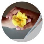 zwei Hände halten eine gelbe Blume, Workshop Webseiten-Tag, Jungo-Grafik