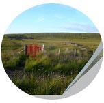 Kreis mit rotem Gartentor in Irlands Landschaft, Workshop Bildsprache, Jungo-Grafik