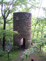 Bild: Fuchsturm Wünschendorf Erzgebirge