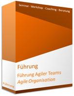Seminar Führung agiler Teams