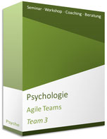 Seminar Agile Teams