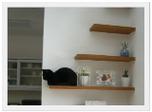 猫と共生する家