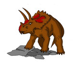 Bild eines Arrhinoceratops