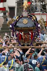 2013年 蕨・塚越稲荷神社「初午祭」本社神輿渡御