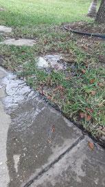 lawn sprinklers repairs