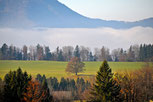 Strubklamm | Austria