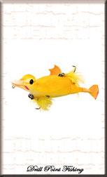 Hybride Suicide Duck