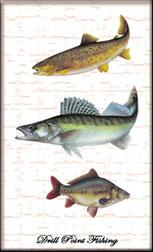 Drill Point Fishing Onlineshop, Unterkategorie, Accessoires, Fisch-Stickers & Fisch-Aufkleber