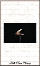 Nassfliegen & Wetflies zum Fliegenfischen auf Bachforellen, oder ÄscheN