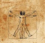 yoga anatomie, yoga medizin, yoga im alltag