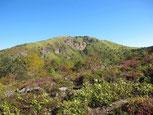 後で登る根子岳の頂上