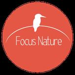 Dans le 1000 Communication - Agence graphique en Loir-et-Cher - Création de logos et de chartes graphiques - Logo de Focus Nature, stages photos et vente de photos