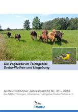 Jahresbericht Nr. 31 - 2016