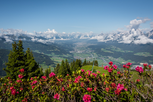 Ferienpension Steiner Weerberg Tirol Österreich-Wandern Zillertaler Alpen