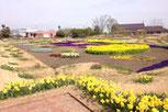 農業園芸センター