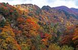紅葉の面白山高原