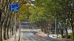 青葉山東キャンパス