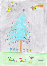 Die Weihnachtsblautanne
