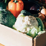 These 7 Produce Delivery Services Will Help You Eat More Fruits and Veggies
