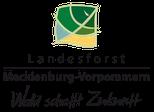 Jugendwaldheim Dümmer