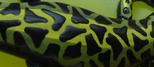 1/5 Rückenlinie: Olivegrün/hellgrün