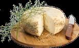 maremma pecorino pecora formaggio caseificio toscano toscana spadi follonica forma tagliata tagliato taglio tavola tavolo italiano origine latte italia nuovi sapori saporito aromatiche aromatizzato stagionato finocchio